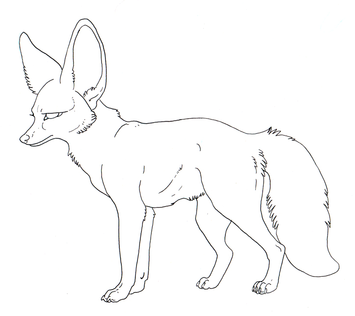 Free_Lineart___Bat_Eared_Fox_by_MisterAsphodel.jpg