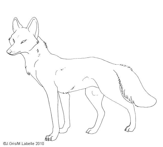 Free_Lineart___Honshu_Wolf_by_MisterAsphodel.jpg