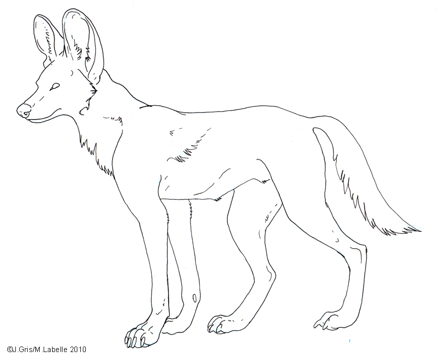 Free_Lineart___Painted_Dog_by_MisterAsphodel.jpg