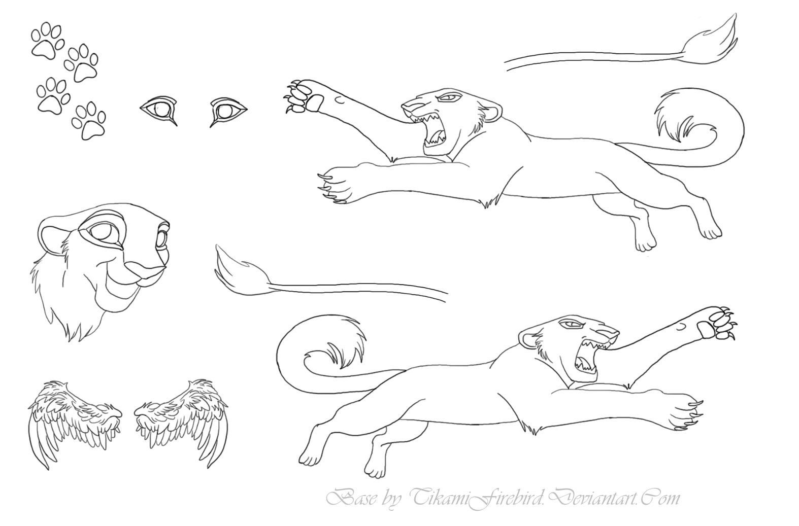 Lion_Tiger_Big_Cat_Ref_Sheet_by_tikamifirebird.png