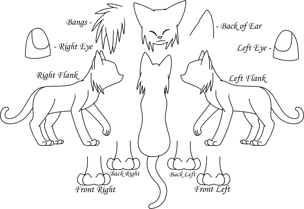 cat_reference_sheet_by_skyclandensetsu-d5qkug3.png