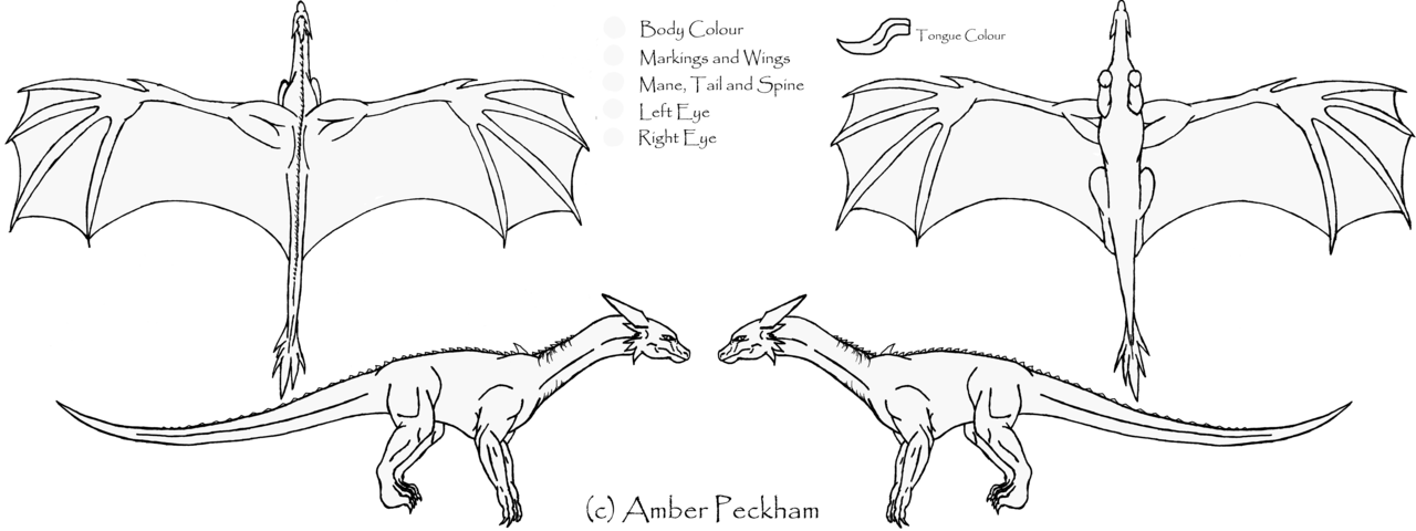 dragon_reference_sheet___ms_paint_friendly_by_the_bone_snatcher-d4tg9nx.png
