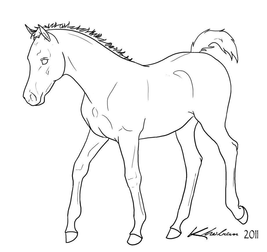 foal_lineart_by_kholran-d4mtylu.jpg
