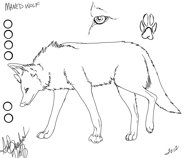free_manned_wolf_reference_sheet_by_darkgreendracon-d58hths.png
